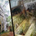 Marmaris'ten Dor Düzeninde Bir Kaya Mezarı