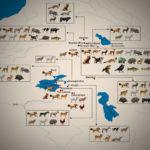 Urartu Dönemi'nde Hayvan ve Hayvancılık: Çivi Yazılı Belgeler, Arkeolojik Bulgular ve Betim Sanatı Üzerinden Bir Değerlendirme